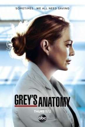 Série A Anatomia de Grey - 17ª Temporada Torrent
